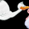 唾液で排卵日を予測!プチアイビスの分りやすい使い方と4つの注意点